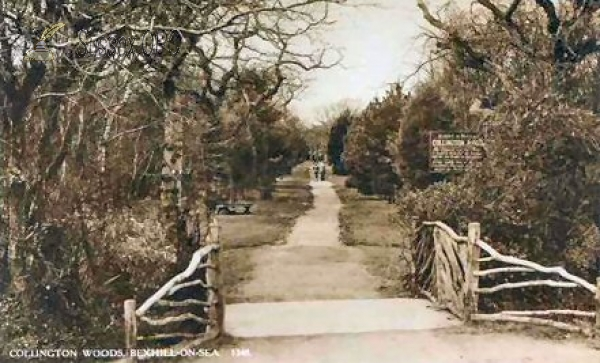 Image of Bexhill - Collington Woods, Entrance