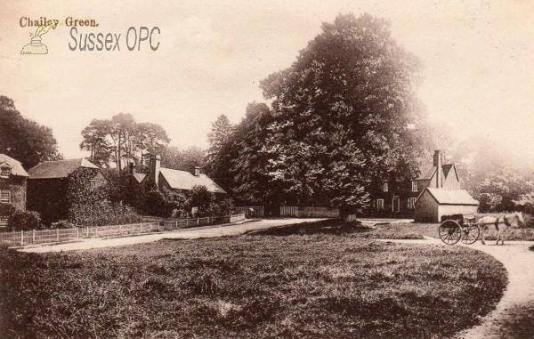 Image of Chailey - Green