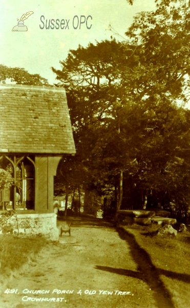 Image of Crowhurst - Old yew tree and church porch