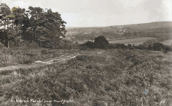 Hartfield - Ashdown Forest