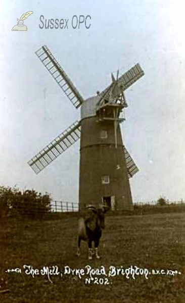 Patcham - The Windmill
