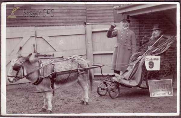 Uckfield - Donkey Invalid Carriage