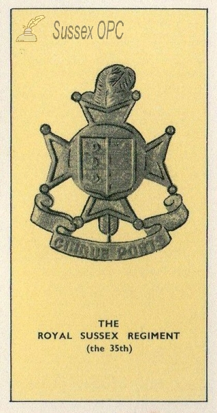 Royal Sussex Regiment - Badge (35th)