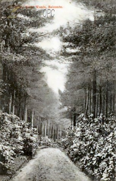 Image of Balcombe - Highley Manor Woods