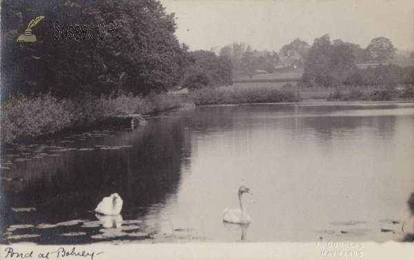 Image of Bolney - Pond