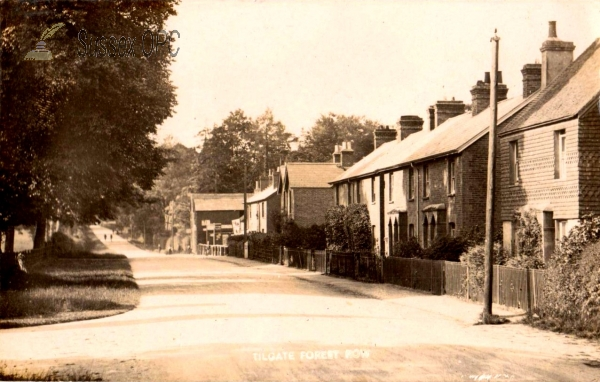 Image of Tilgate - Forest Row