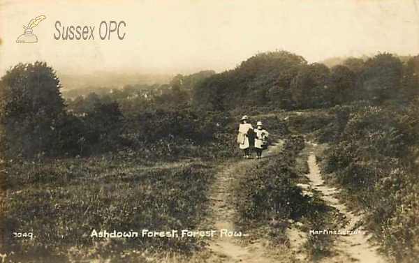 Image of Forest Row - Ashdown Forest