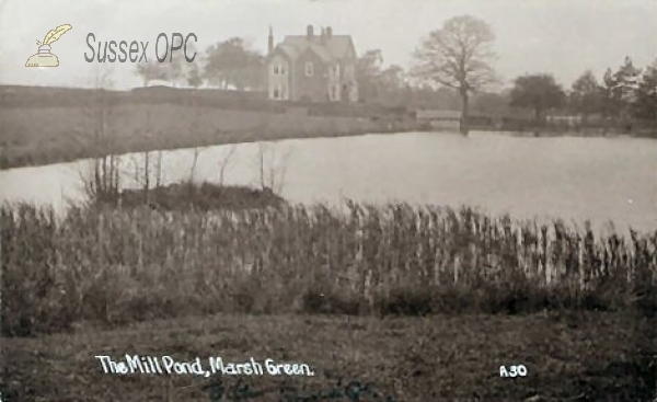 Marsh Green - Mill Pond