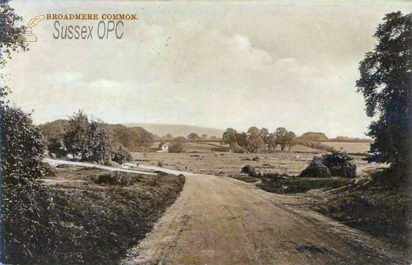 Image of Henfield - Broadmere Common