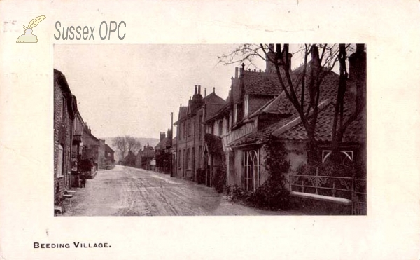Image of Beeding - The Village