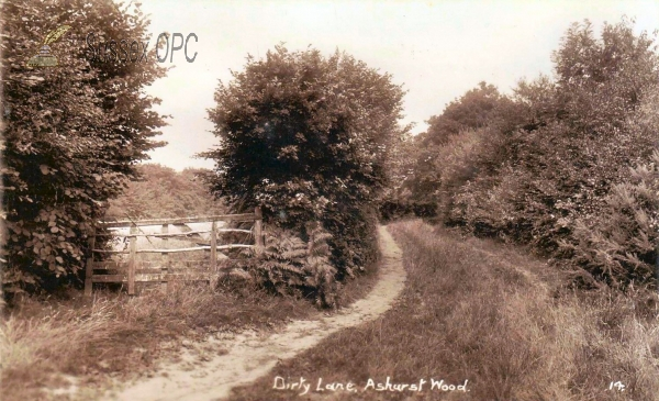 Ashurst Wood - Dirty Lane